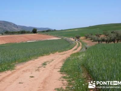 Ruta de las Caras - Buendía (Embalse de Buendía); senderismo llanes